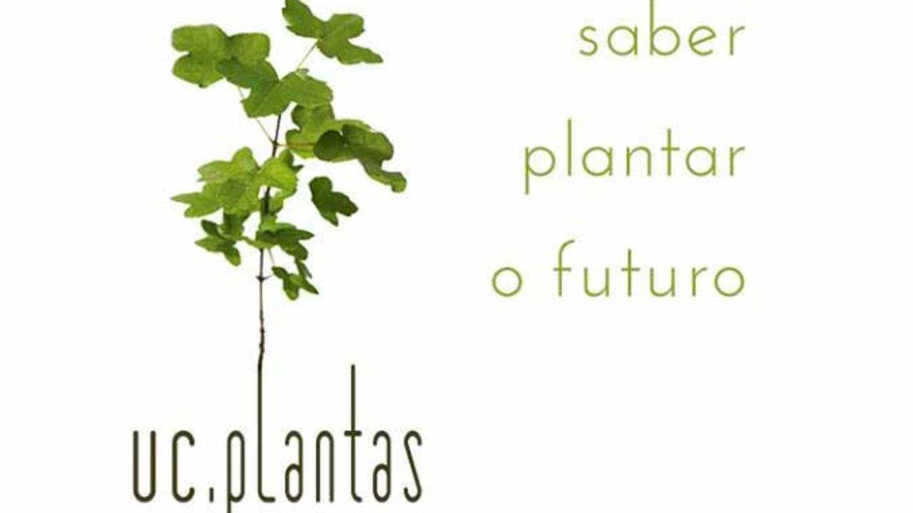 uc.plantas