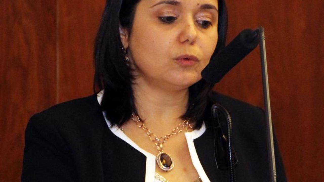 Prof. Suzana Tavares da Silva