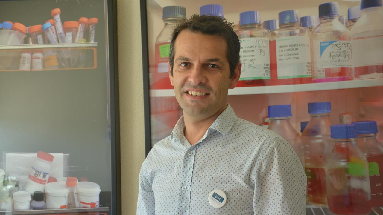 A equipa é liderada pelo Inv. Doutor Henrique Girão