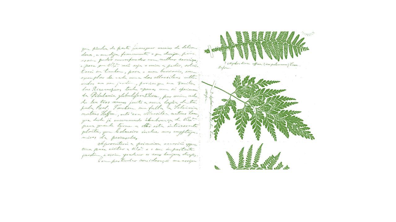 cartas da natureza