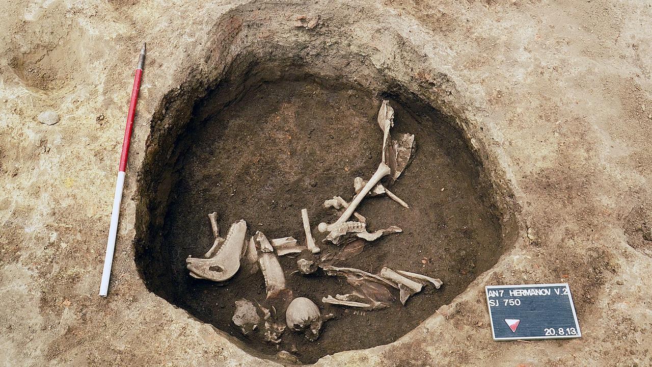 Esqueletos encontrados em Osijek