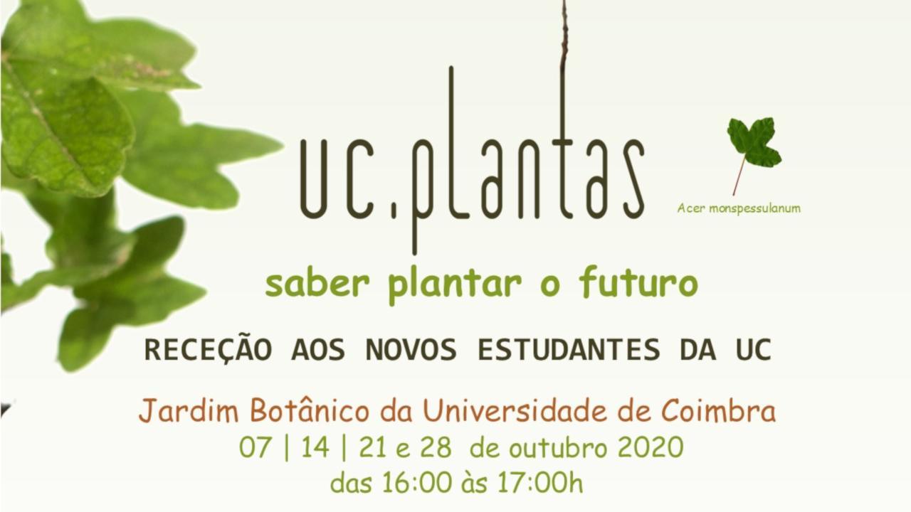 UC.Plantas 2020