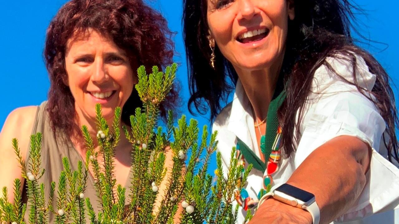 Maria João Barroca e Aida Moreira da Silva