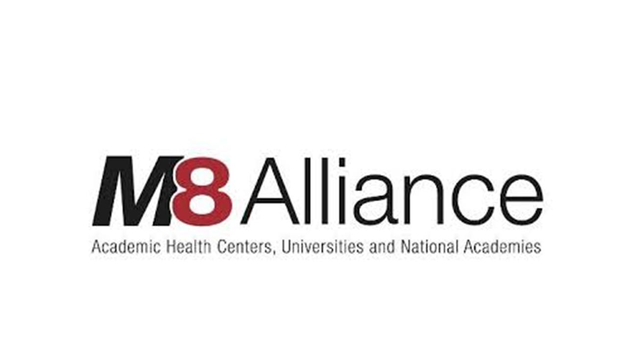 M8 Alliance Summer School