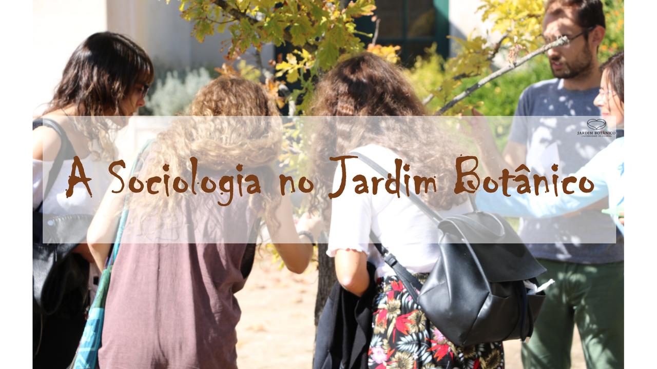 A Sociologia no Jardim Botânico