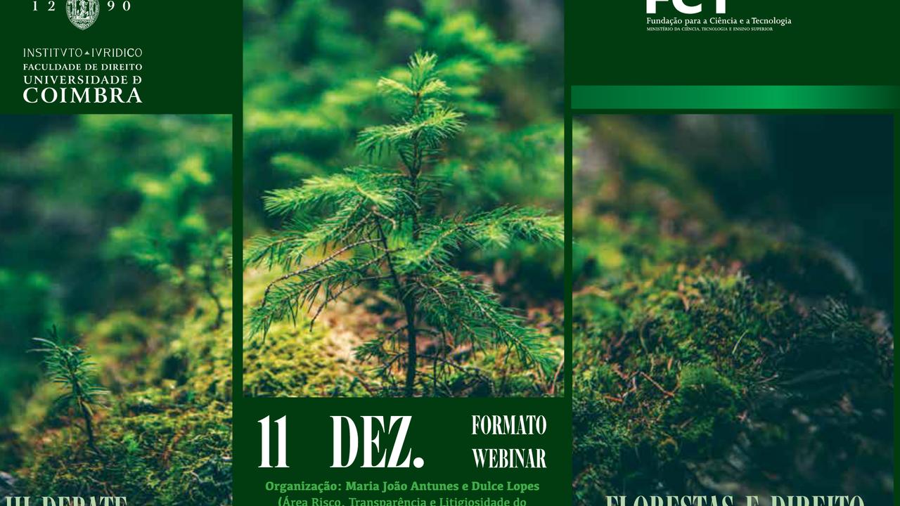 cartaz florestas