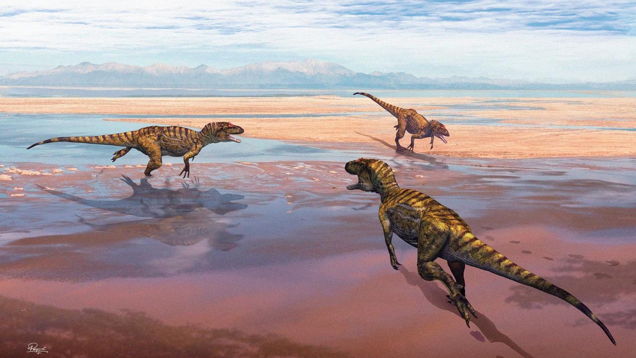 Reconstituição paleogeográfica há 156 milhões de anos
