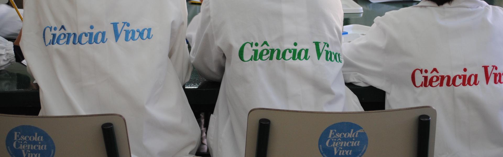 Escola Ciência Viva do Rómulo
