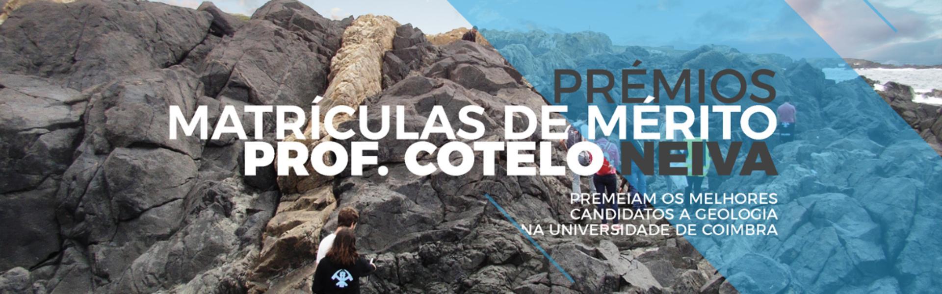 "Prémios ""Matrículas de Mérito Professor Cotelo Neiva"" - Aviso de Abertura"