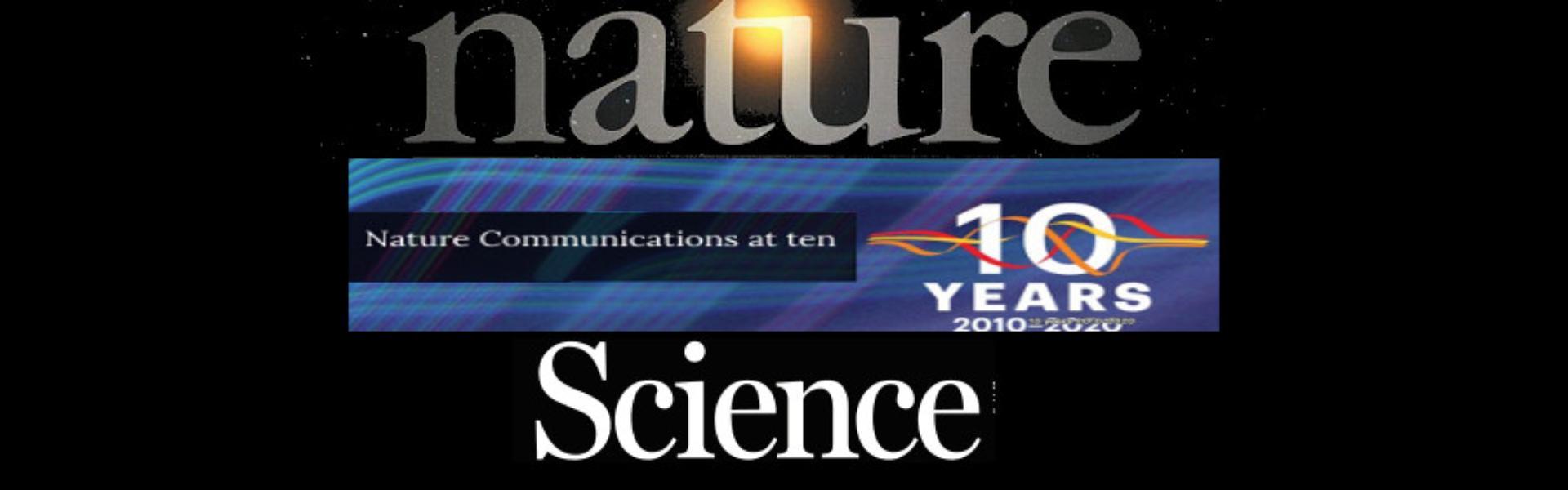 Em 2020 o DCV publicou artigos em várias revistas científicas de prestígio