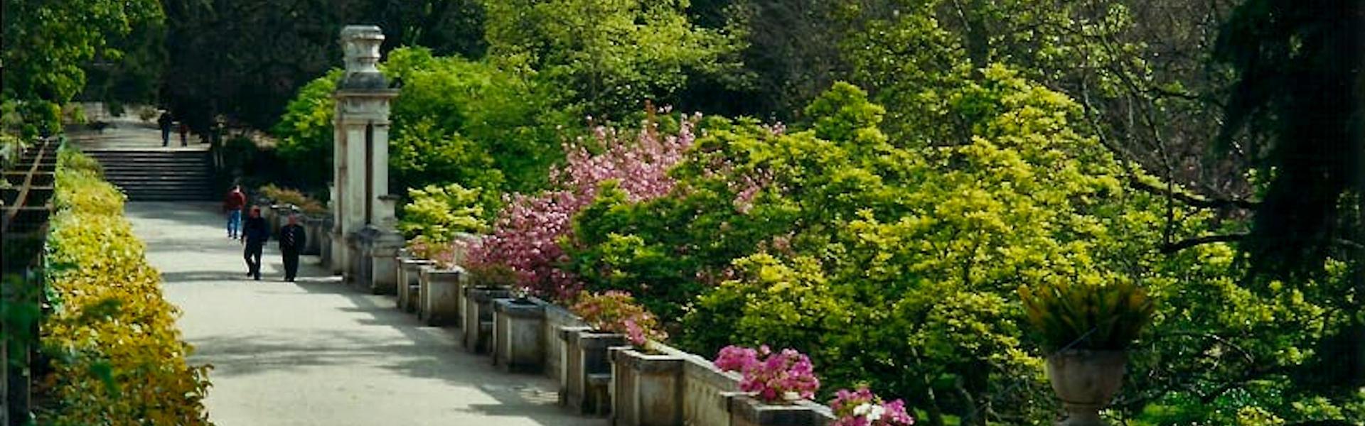 Reabertura do Jardim Botânico