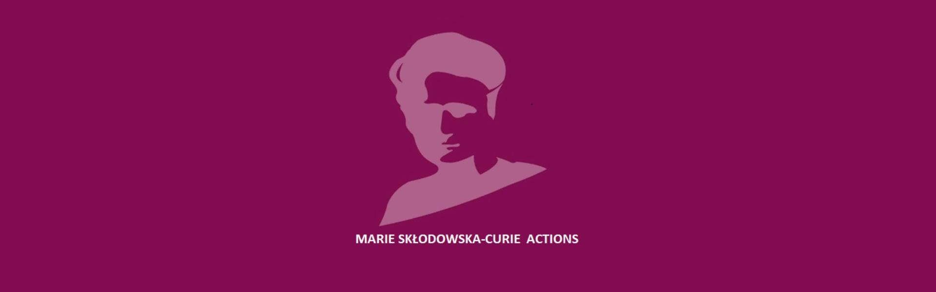 Are you planning to apply to a Marie Curie Individual Fellowship (MSCA-IF)?